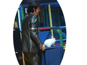 Mago conejo fiesta infantil
